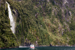 半信半疑的声音-新西兰 图库摄影