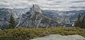 半圆顶优胜美地国家公园加利福尼亚 免版税库存照片