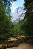 半圆顶岩石 免版税图库摄影