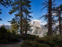 半圆顶过滤从冰川点看见的美国加州红杉树,优胜美地国家公园 库存图片