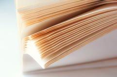 半开敞的一般笔记本,有白色板料的,一个厚实的笔记本的页开放笔记本 库存照片