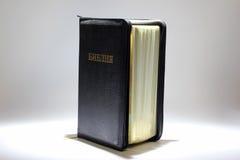 半开立场在白色背景的圣经 免版税库存图片
