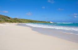半月湾大西洋海岸-加勒比热带海岛-安提瓜和巴布达 库存图片