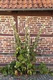 半木料半灰泥的议院在Rehna 免版税库存图片