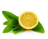 半柠檬和叶子 免版税库存照片