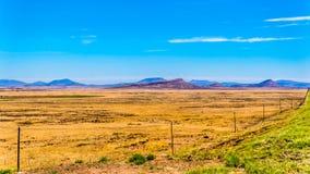 半沙漠南部非洲的干旱台地高原地区的不尽的大开风景在自由州和东开普省 免版税库存图片