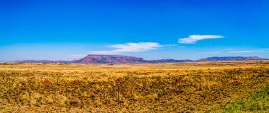 半沙漠南部非洲的干旱台地高原地区的不尽的大开风景的全景在自由州和东开普省 免版税库存图片