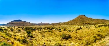 半沙漠南部非洲的干旱台地高原地区的不尽的大开风景的全景在自由州和东开普省 免版税库存照片
