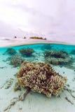 半海岛和礁石水下的场面  免版税库存图片