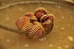 半熟血液鸟蛤壳服务用辣调味汁 图库摄影