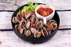 半熟血液鸟蛤壳服务用辣调味汁 免版税图库摄影