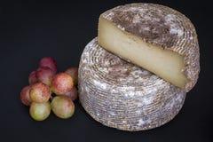 半硬年迈的山羊乳干酪头  免版税库存图片