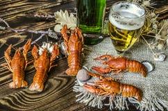 半空的玻璃用啤酒和一个瓶啤酒和被盐溶的煮沸的红色小龙虾 免版税库存照片