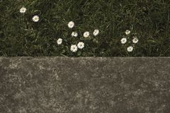 半自然在城市 图库摄影
