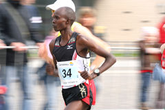 半马拉松运动员 库存图片
