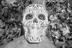 华丽头骨装饰的假日 库存图片