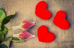 华伦泰与两朵玫瑰的爱标志 库存图片