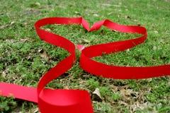 华伦泰在草的丝带心脏 免版税图库摄影