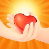 华伦泰夫妇 做形状由他们的手的心脏 免版税库存照片