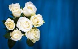 华伦泰的背景 百花香由白玫瑰做成在蓝色背景 平的位置,顶视图 重点 免版税库存照片