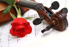 华伦泰红色玫瑰 库存照片