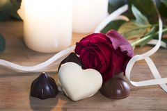 华伦泰罗斯和巧克力 免版税库存照片