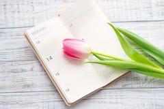 华伦泰` s与郁金香的天静物画开花 库存照片