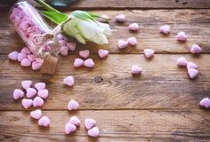 华伦泰` s天,小桃红色糖果心脏形状,白色玫瑰 免版税库存照片