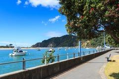 华卡塔尼江边,丰足,新西兰晴朗的海湾的一个镇  免版税库存照片