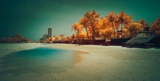 华欣海滩的红外图象 免版税库存照片
