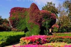 华欣,泰国:修剪的花园大象在庭院里 免版税库存图片