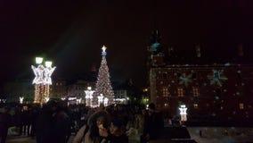 华沙圣诞树 免版税图库摄影
