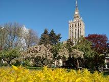 华沙春天在中心 免版税库存照片