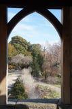 华盛顿全国大教堂-眺望台视图 库存照片