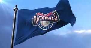 华盛顿国民旗子,美国职业棒球队,挥动-圈 股票视频