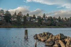 华盛顿湖家和跳船 库存图片