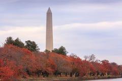 华盛顿特区秋天风景 库存图片