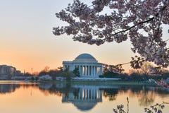 华盛顿特区,杰斐逊纪念品在春天 库存图片