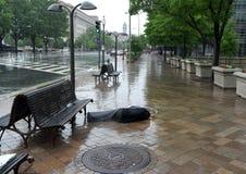 华盛顿特区,- 2018年6月03日:无家可归的人在街道上的边路说谎在中心华盛顿特区, 库存图片