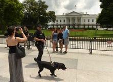 华盛顿特区, - 2018年6月02日:游人和特勤局瓜儿豆 免版税库存照片