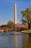 华盛顿特区, :华盛顿纪念碑 库存图片