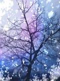 华美的五颜六色的树 免版税库存图片