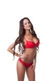 华美的亭亭玉立的模型在红色色情女用贴身内衣裤穿戴了 免版税库存照片
