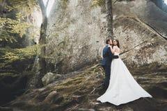 华美的新娘,亲吻和拥抱在峭壁附近的新郎有惊人的看法 免版税图库摄影
