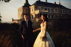 华美的深色的年轻握手a的新娘和迷人的新郎 库存图片
