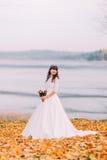 华美的白色礼服的美丽的无辜的体贴的新娘在下落的叶子站立在河沿 免版税库存图片