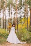 华美的白色礼服的美丽的无辜的年轻深色的新娘在森林足迹站立 免版税图库摄影