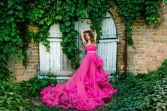 华美的礼服的美丽的妇女 库存照片