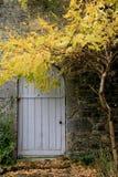 华美的秋天在门前面的弯的分支离开 免版税库存照片