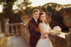 华美的走在金黄秋天自然的新娘和可爱的新郎 免版税库存图片